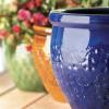 PFC Flower Pot Trio